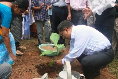 Planting trees in school premises at LPS Peroorkada